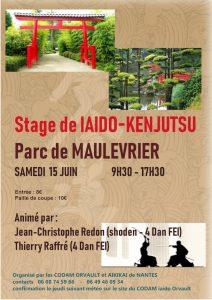Stage de Iaido Kenjutsu au parc de Maulévrier